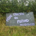 La Ferme Equestre de Poifond vous accueille du mardi au dimanche toute l'année !